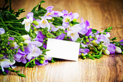 Lilac freesia flowers Royalty Free Stock Photo