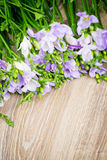Lilac freesia flowers. On wooden background Royalty Free Stock Photo