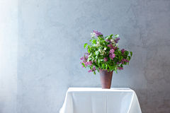 Lilac in front of stylish wall Royalty Free Stock Photo