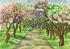 Lilac garden Stock Photos
