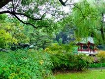 Lilac Garden interior Royalty Free Stock Image