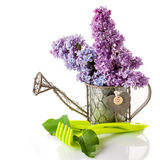 Lilac and garden tools for gardening Stock Photos