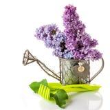 Lilac and garden tools for gardening Stock Photos