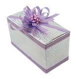 Lilac gift die op wit wordt geïsoleerdn Stock Afbeelding