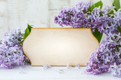 Lilac and greeting card Stock Photo