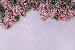 Lilac on grey background, flat lay. Violet and pink lilac flowers on grey pastel background, flat lay style. Place for your text Royalty Free Stock Images