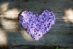 Lilac heart Royalty Free Stock Photos