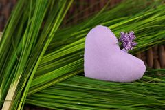 Lilac heart on green grass. Lilac scented heart on green grass Stock Photos