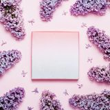 Lilac holiday background with place for text. stock images