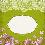 Lilac&lace Fotos de Stock