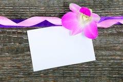 Lilac orchid Cymbidium Stock Photo