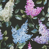 Lilac pattern Stock Photography