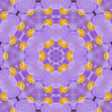 Lilac pattern Royalty Free Stock Photos