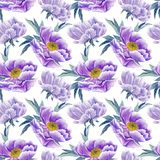 Lilac peonies seamless pattern Royalty Free Stock Images