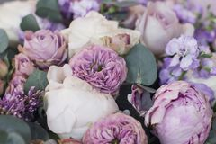 Lilac, peonies, roses floral background stock image
