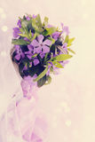 Lilac periwinkle,tinted Stock Images