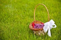 Lilac petals Stock Photo