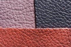 Lilac pink dark leather Stock Photos