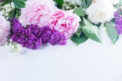 Lilac, pink peonies and lilly of the walley. Floral border of fresh flowers - lilac, pink peonies and lilly of the walley flowers on white background Royalty Free Stock Photos
