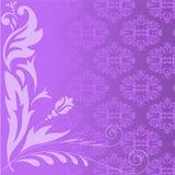 Lilac plant composition Stock Photos