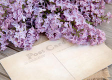Lilac and postcard on weathered wood Royalty Free Stock Photo