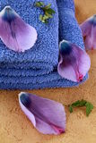 Lilac purple towels and flower petals Royalty Free Stock Image