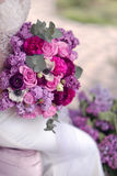Lilac and rose Stock Images