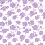 Lilac roses Royalty Free Stock Photo