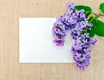 Lilac on sackcloth with paper Stock Photography