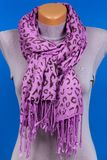 Lilac scarf on mannequin isolated on blue background. Female accessory stock photo