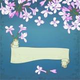 Lilac&scroll Imagens de Stock