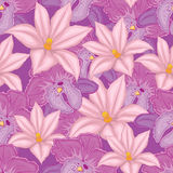 . lilac seamless background with pink and lilac orchids Stock Images
