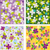 Lilac set. Collection of seamless floral backgrounds beautiful lilacs Stock Photography