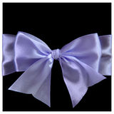 Lilac silk bow Stock Image