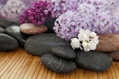 Lilac spa Royalty Free Stock Photography