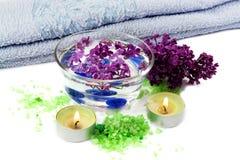 lilac spa στοκ εικόνες