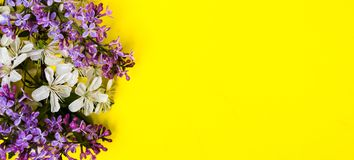Lilac and spring blossom flowers on yellow background. Lilac and spring blossom flowers arrangement on yellow background stock photo