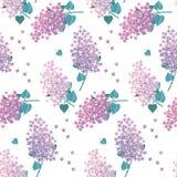 Lilac spring blossom surface design. Stock Photo