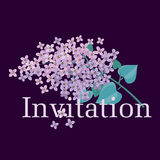 Lilac spring blossom vector illustration. Stock Image