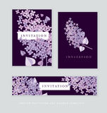 Lilac spring blossom vector illustration. Stock Images