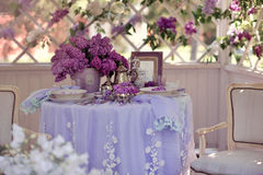 Lilac spring Stock Images
