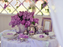 Lilac spring Royalty Free Stock Image