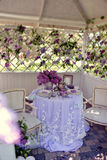 Lilac spring Royalty Free Stock Photo