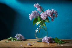 Lilac. Still life with a lilac branch Royalty Free Stock Image
