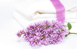 Lilac and towels Royalty Free Stock Image