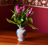 A lilac tulip bud. Macrophoto royalty free stock photos