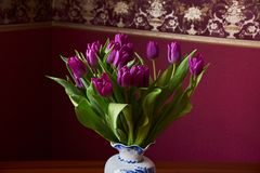 Lilac Tulips. Bud, petals, bouquet. Lilac tulips in a decorative vase stand on a table. Russia, Moscow, holiday, gift, mood, nature, flower, plant, bouquet Stock Photography