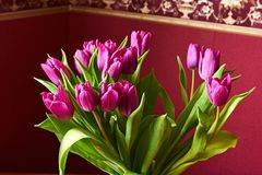 Lilac Tulips. Bud, petals, bouquet. Lilac tulips in a decorative vase stand on a table. Russia, Moscow, holiday, gift, mood, nature, flower, plant, bouquet Stock Photo