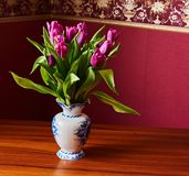 Lilac Tulips. Bud, petals, bouquet. Lilac tulips in a decorative vase stand on a table. Russia, Moscow, holiday, gift, mood, nature, flower, plant, bouquet Stock Image