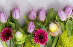 Lilac tulips and gerberas on a white background Stock Photography